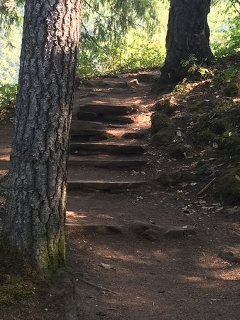 Prospect, OR: Steps to the amazing Barr Creek Falls