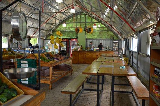 Chaguaramas, Trinidad: Upick Cafe