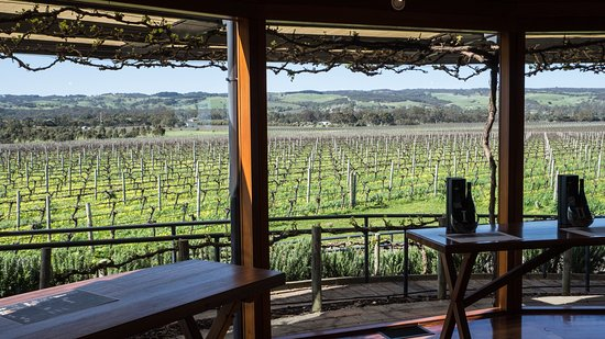 McLaren Vale, Australien: The Black sheep and view from tasting room