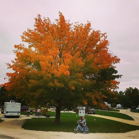 Marion, IA: Fall camping in Loop A