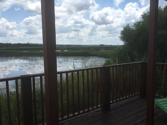 Spanish Fort, AL: View from porch of fishing cabin at Meaher State Park