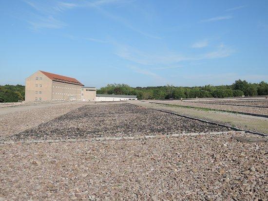 Земля Тюрингия, Германия: Buchenwald
