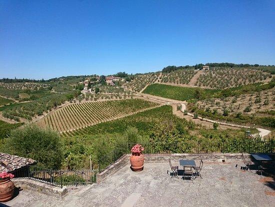 Gaiole in Chianti, Italië: DSC_0075_large.jpg