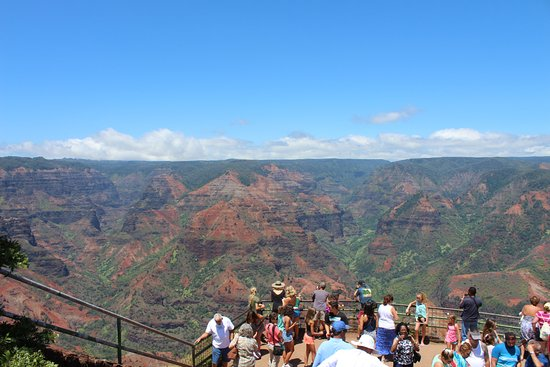 Waimea Canyon: View of the canyon with viewing area in foreground
