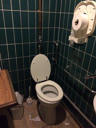 Pessac, Francja: WC de l'établissement
