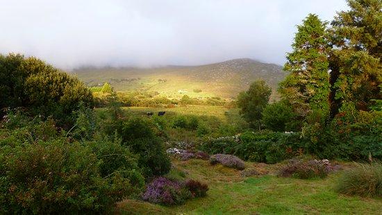 County Galway, Irlanda: Superbe lumière du soir, la montagne autour de la maison