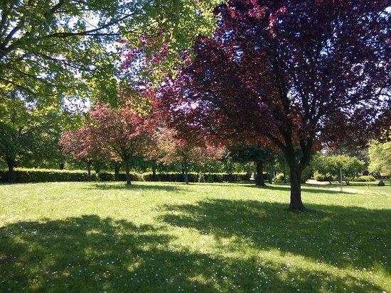 Nagykanizsa, Hungría: Natural environment