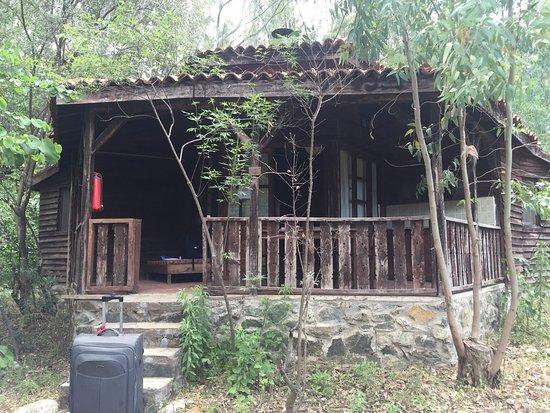Pastoral Vadi Ecologic Life Farm: Peace and beauty