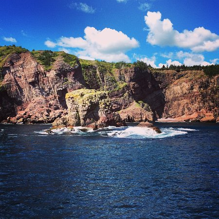 Bay Bulls, แคนาดา: Amazing coastal views on the trip