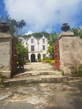 Saint Peter Parish, Barbados: 20160812_101927_large.jpg