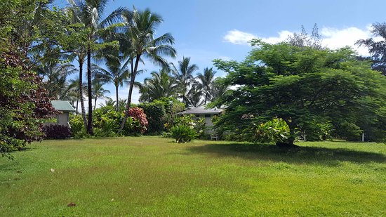 Hale Makai Cottages: Open Space