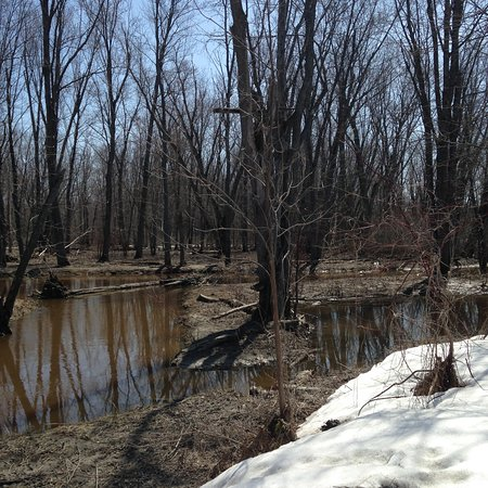 High water at Westmeath Provincial Park