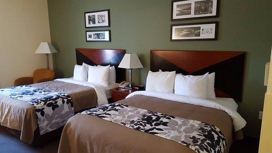Sleep Inn & Suites University/Shands: Habitación