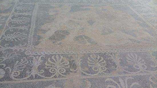 Central Macedonia, Greece: Dettaglio di un mosaico dela ''casa di Elena''