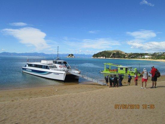 Kaiteriteri, Nieuw-Zeeland: Happy holiday makers boarding a seashuttle at Kaiterteri Beach