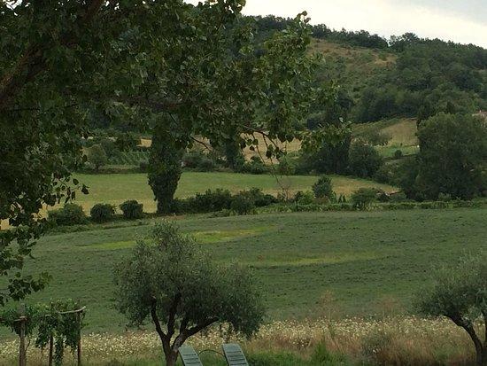 写真Borgo Belvederi枚