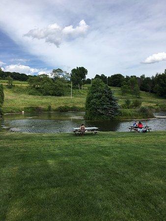 Millbrook, estado de Nueva York: Lake in the Winery