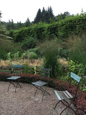 clematites picture of jardin de berchigranges gerardmer. Black Bedroom Furniture Sets. Home Design Ideas