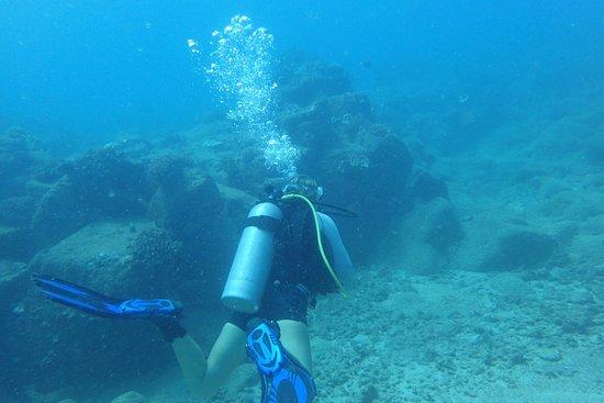 Koloa, Hawái: OI000399_large.jpg