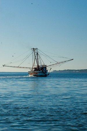 Saint Simons Island, Gürcistan: Shrimp boats In the sound