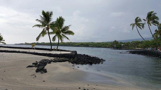 Honaunau, هاواي: JPEG_20160823_163342_-697569804_large.jpg