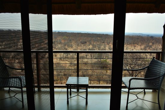 Victoria Falls Safari Club: Looking out the sliding door to the bush beyond. I watched wildlife that evening as it traversed