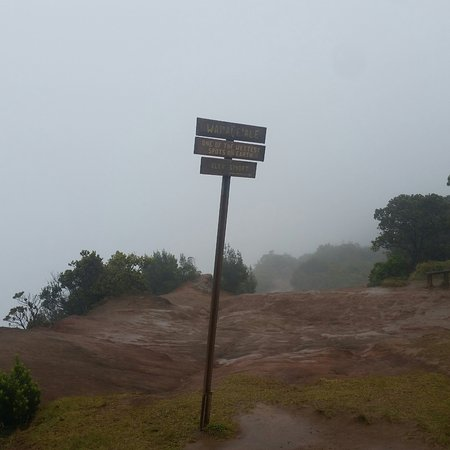 Waimea Canyon: Bring a jacket! Higher up, your in the clouds, mist/rain is HIGHLY likely