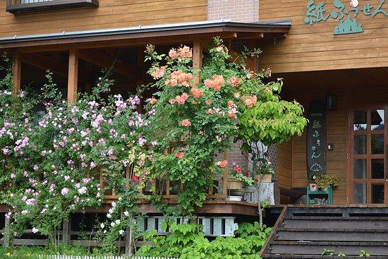 Kijimadaira-mura, Japan: 夏外観
