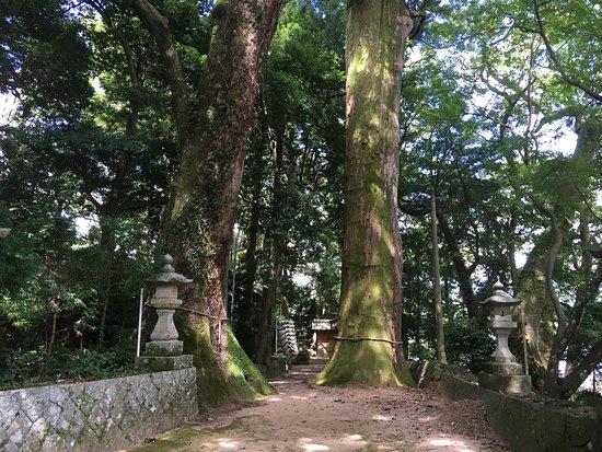 Owase, Japón: photo0.jpg