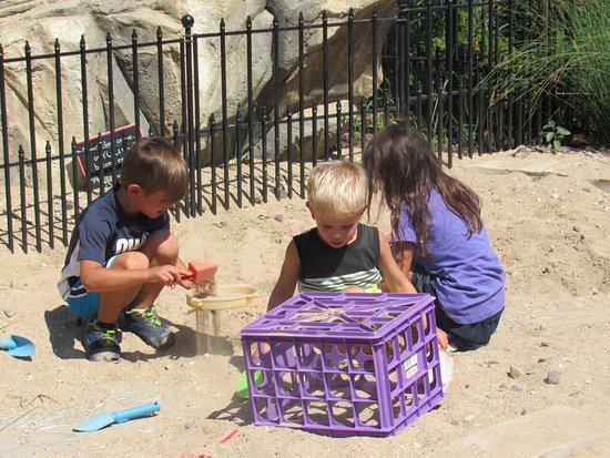 "Sheboygan, WI: Finding fossils near ""Horton Hatches the Egg."""