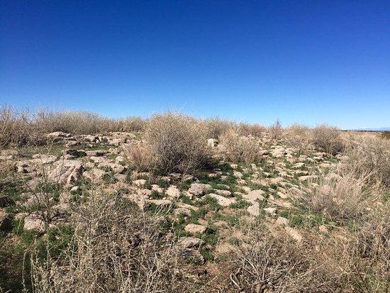 Los Alamos, NM: photo9.jpg