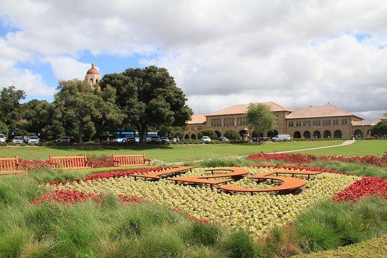 Palo Alto Foto