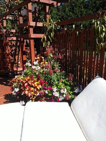 Earthbox Inn & Spa: IMG_20160823_122944_large.jpg