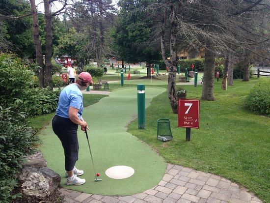 Stowe Golf Park: A nice mini golf experience.
