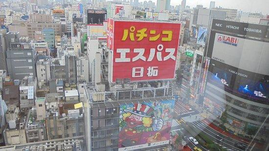 Shinjuku Prince Hotel: Nice view day time