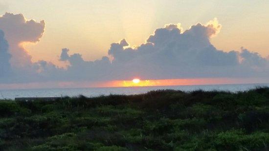 Padre Island National Seashore: 20160804_065853_large.jpg