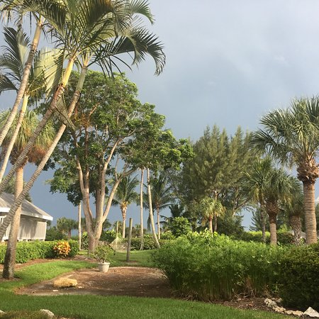 Tortuga Beach Club Resort: photo3.jpg