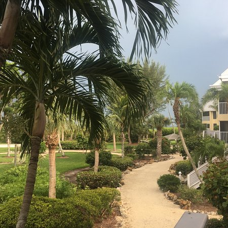 Tortuga Beach Club Resort: photo5.jpg