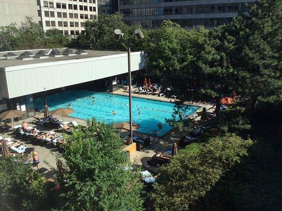 Large Indoor Outdoor Pool Picture Of Sheraton Centre Toronto Hotel Toronto Tripadvisor