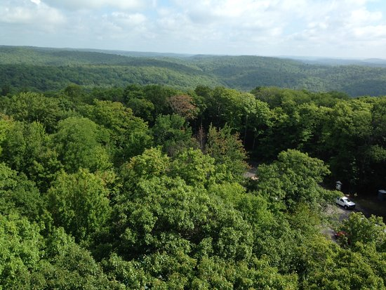 Dorset scenic lookout tower. View from top.