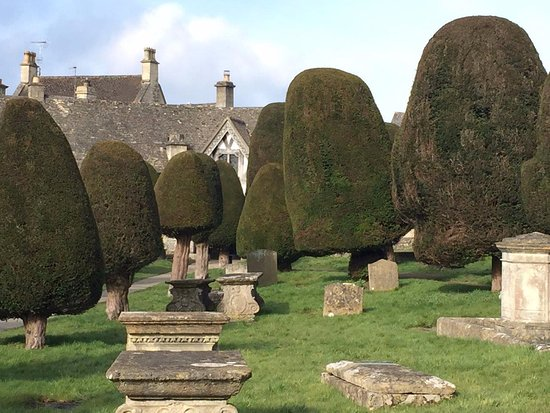Painswick, UK : more sculptured yews....