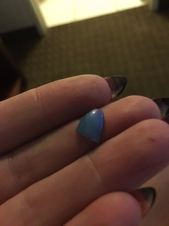 Long Beach Convention Center Travelodge: broken acylic nail we found on floor