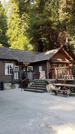 Weott, Kaliforniya: Humboldt Redwoods State Park - Café e Loja de Souvenirs