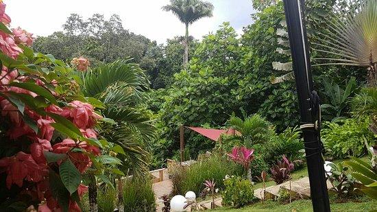 Petit-Bourg, Guadeloupe: Les Bières de la Lézarde