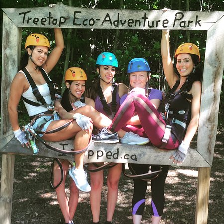 Treetop Eco-Adventure Park