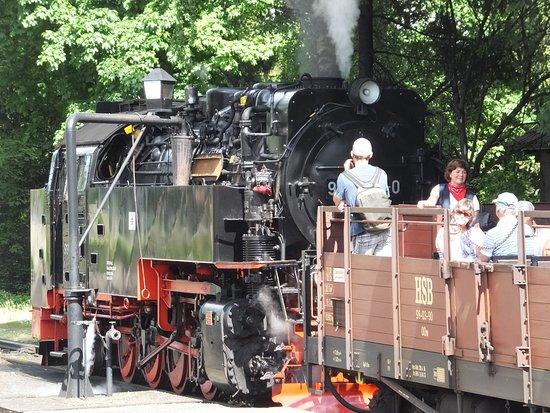 Harzer Schmalspurbahnen: 駅で別の汽車とすれ違い