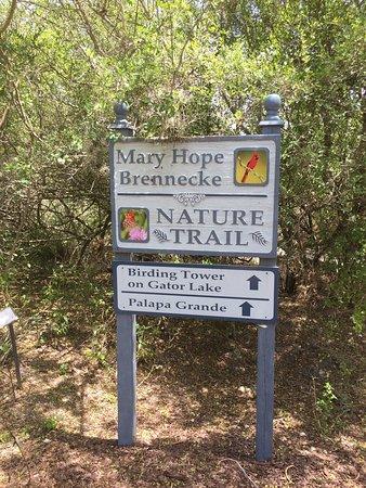 South Texas Botanical Gardens U0026 Nature Center