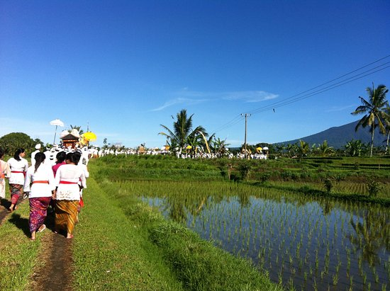 Gusti Made Bali Tour - Day Tours
