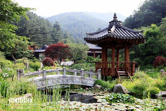 Gapyeong-gun, Corea del Sur: อีกรูป