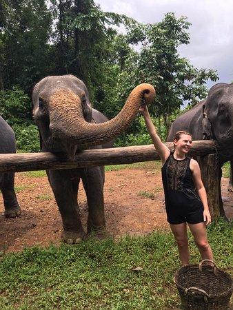 Phangnga, Thailand: Feeding Moon bananas